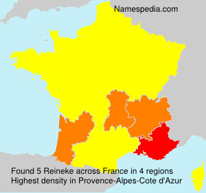 Surname Reineke in France