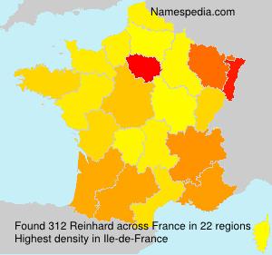 Surname Reinhard in France
