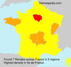 Surname Reintjes in France