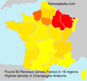 Surname Reneaux in France