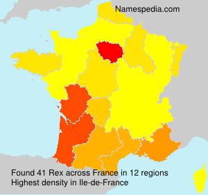 Familiennamen Rex - France