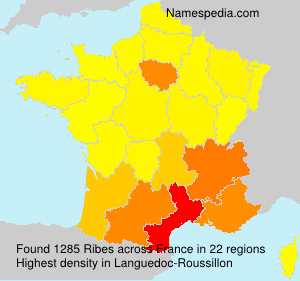 Surname Ribes in France