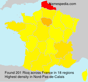 Surname Ricq in France