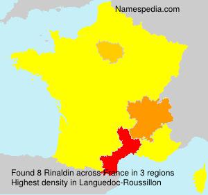 Surname Rinaldin in France