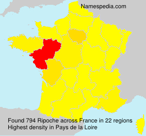 Surname Ripoche in France