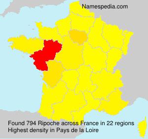 Familiennamen Ripoche - France