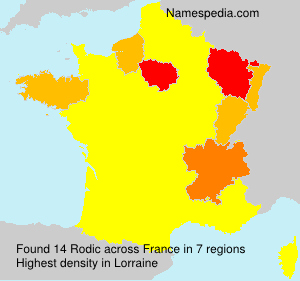 Familiennamen Rodic - France