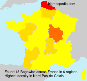 Surname Rogowicz in France