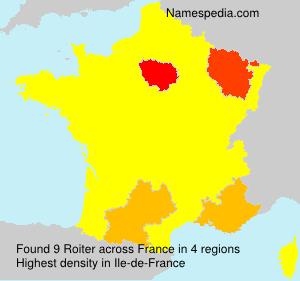 Surname Roiter in France