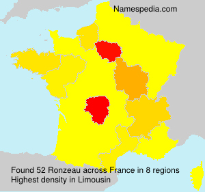 Surname Ronzeau in France