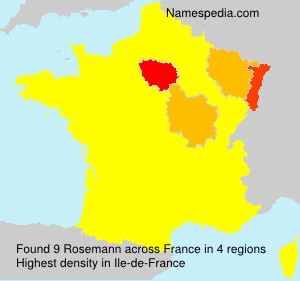Surname Rosemann in France