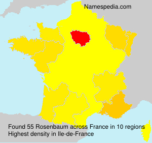 Surname Rosenbaum in France