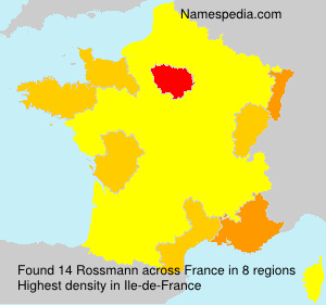 Surname Rossmann in France