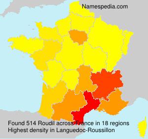 Surname Roudil in France