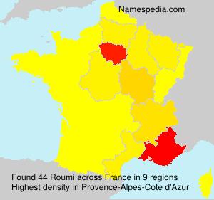 Familiennamen Roumi - France