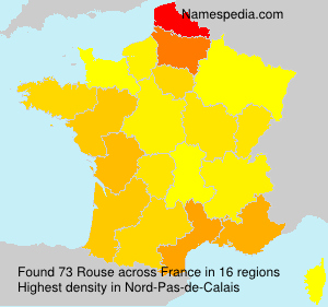 Surname Rouse in France