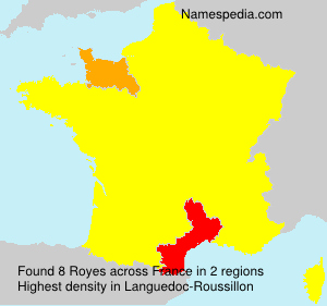 Surname Royes in France