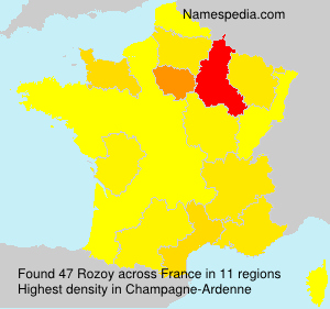 Surname Rozoy in France