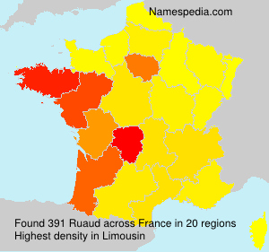 Surname Ruaud in France