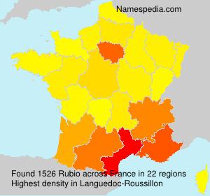 Surname Rubio in France