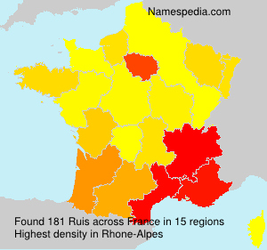 Surname Ruis in France