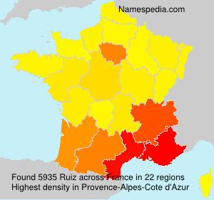 Surname Ruiz in France