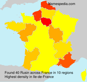Surname Rusin in France