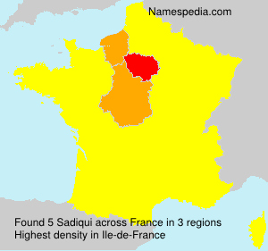 Surname Sadiqui in France