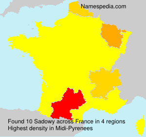 Surname Sadowy in France