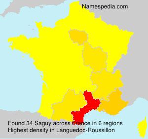 Surname Saguy in France