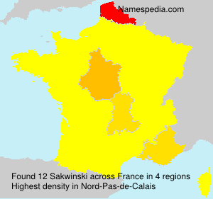 Surname Sakwinski in France