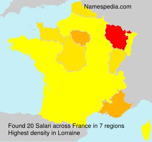 Surname Salari in France