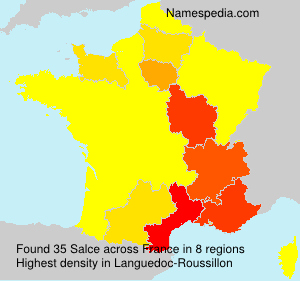 Surname Salce in France
