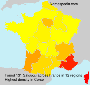 Surname Salducci in France