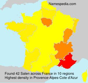 Surname Salen in France
