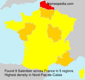Salenbier