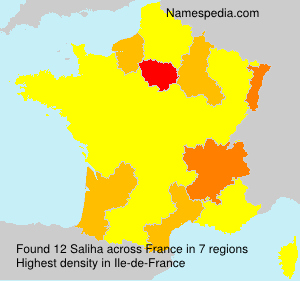 Surname Saliha in France
