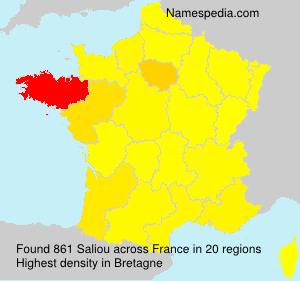 Surname Saliou in France