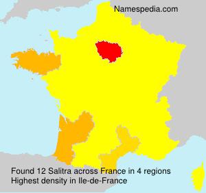 Familiennamen Salitra - France