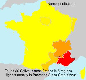 Familiennamen Salivet - France