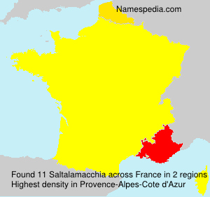 Surname Saltalamacchia in France