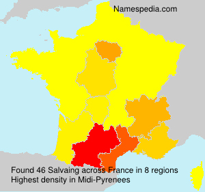 Surname Salvaing in France