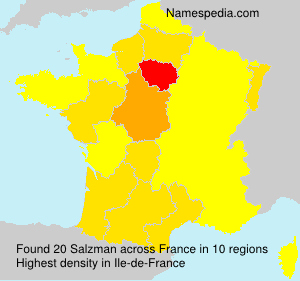 Familiennamen Salzman - France