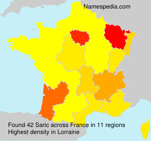 Surname Saric in France