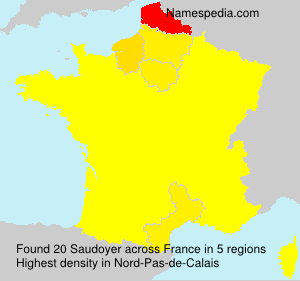 Surname Saudoyer in France