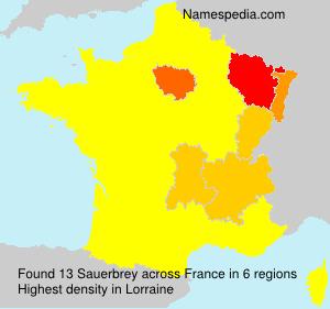Surname Sauerbrey in France