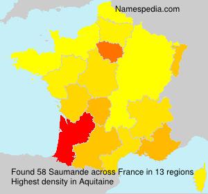 Familiennamen Saumande - France
