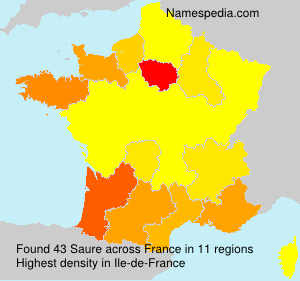 Surname Saure in France