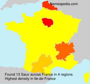 Familiennamen Sauv - France