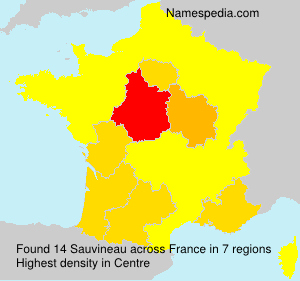 Surname Sauvineau in France